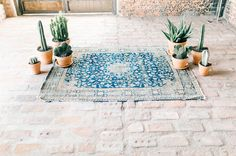 Tucson Wedding - standing on vintage rug from grandma surrounded by potted plants and cactus