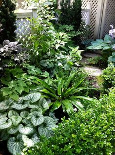 Traditional Perennial - Angus Lands - traditional - landscape - vancouver - by Glenna Partridge Garden Design