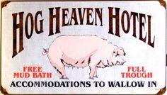 hog heaven hotel