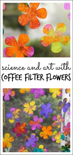 Explore science and art concepts with coffee filter flowers. Awesome spring art project!