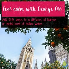 Feel calm with Orange Oil 🌸🌸🌸 Add drops to a diffuser, oil burner or metal bowl of boiling water. Metal Bowl, Oil Burners, Orange Oil, Big Ben, Diffuser, Essential Oils, Calm, Water, Instagram