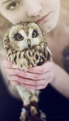 Owls are my favorite, and I think the most beautiful animals