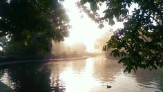 Lister Park #running #listerpark #morning #autumn
