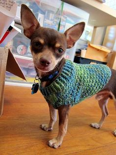 "Chihuaha Sweater. No pattern, but she gives a ""recipe"" for it on her Ravelry page."