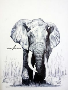 Mighty Elephant - Ballpoint Pen by srimant on DeviantArt