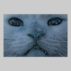 A Wintery Feline 36 x 24 Poster available at www.zazzle.com/stevebrownleeart