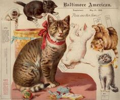 """Vintage cat paper dolls: """"Puss and her Family"""""""