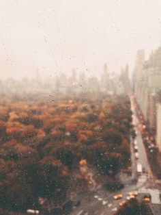 fall aesthetic background - Ilka Elise B - Nature travel Aesthetic Backgrounds, Aesthetic Wallpapers, Autumn Cozy, Autumn Rain, Autumn Photography, Autumn Aesthetic Photography, Rainy Day Photography, Halloween Photography, Photography Lighting