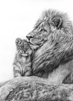Fierce Love Lion & Cub Original Charcoal Drawing by Ashley Benedict Lion Cub Tattoo, Cubs Tattoo, Mens Lion Tattoo, Love Drawings, Animal Drawings, Time Piece Tattoo, Tiger Tattoo Design, Lion Painting, Human Figure Drawing