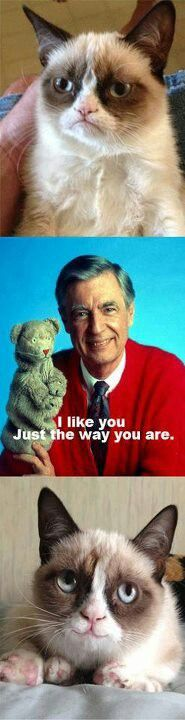 Aww! See Mr. Rogers can even make Grumpy Cat smile!!!