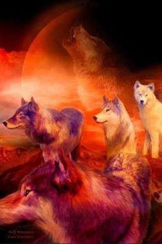 Wolf Angels's photo.