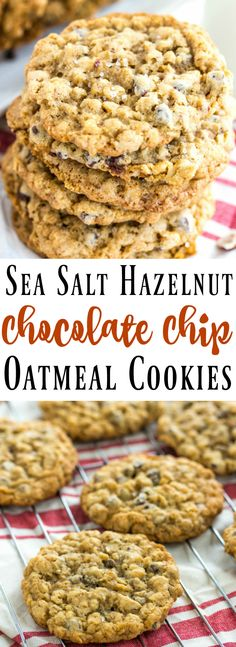 Soft and tasty Sea Salt Hazelnut Chocolate Chip Oatmeal Cookies are a delicious twist on a classic that blends a little salty and sweet.