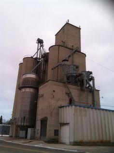 Grain Elevator in Birch Run.