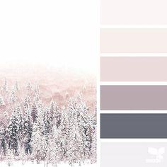 Winter Tones 1.21.18.... neutrals