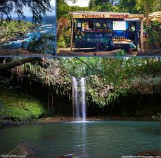 Road to Hana..We swam in the TWIN FaLLS on the Road to Hana and it was pure FUN!