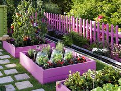 COLORFUL GARDEN--I like the stepping stone path. I am not sure I would paint the plum/pink.maybe yellow. I love the colorful garden beds, totally doing this for the summer Dream Garden, Home And Garden, Herb Garden, Garden Path, Garden Fun, Edible Garden, Garden Steps, Summer Garden, Starting A Garden