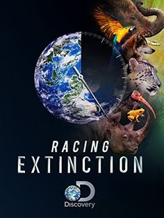 Racing Extinction is an eco-thriller that examines mankind's role in mass extinction. Academy Award-winning documentary filmmaker Louie Psihoyos joins scientists, environmentalists, artists, and engineers to draw attention to this pressing issue. Racing Extinction, Extinction Movie, Species Extinction, Endangered Species, Vegan Documentaries, Save Wildlife, Save Our Earth, Vegan Animals, Frases