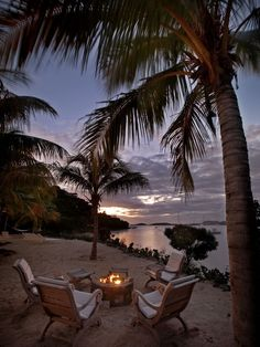 Evening under the coconut trees...Stunning