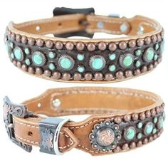 A studded dog collar with Turquoise stones, embossed chocolate alligator leather and antique silver conchos.