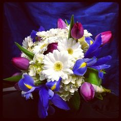 Bride's bouquet with white gerber daisies, pink tulips, and blue iris