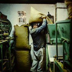 Die Familie wohnt über ihrer Manufaktur. Im Stockwerk dazwischen lagert der Rohstoff. Eine altertümliche Maschine rattert und knackt ununterbrochen die Mandeln.