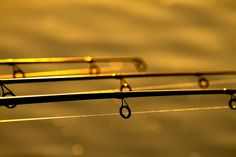 5 Tips to Choosing the Right Fishing Rod