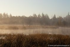 Lunsveen Borger by Adriaan Holsappel, via Flickr