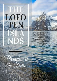 Discover paradise in the Arctic on the Lofoten Islands! We're divulging all the best kept secrets of this MUST-visit destination in Norway!