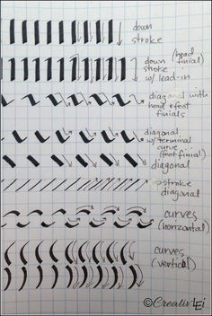 Using a calligraphy marker as a slanted pen, here are the basic strokes to practice. CreativLEI.com
