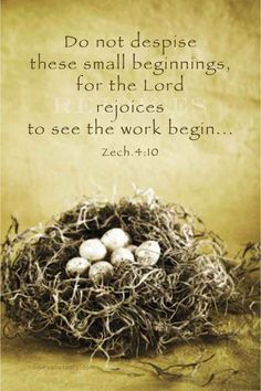 "Zechariah 4:10 ""Do not despise these small beginnings, for the Lord rejoices to see the work begin.""  #scripture,  #bible"