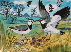"""Lapwings' Nest"" by Mark Hearld (collage). New work to be exhibited at Mark Hearld and Emily Sutton's Open Studio event at The Mount, York: & 17 April and 23 & 24 April 2016"