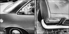 WACHHUND - Das Auto, angeblich des deutschen liebstes Spielzeug. Doch bei den steigenden Spritpreisen dürften besonders Liebhaber älterer Modelle beim Tanken ins Grübeln kommen. Kommt der Hund dann bald ins Fahrrad-Körbchen?