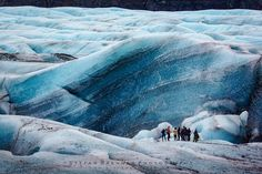 THE ICE ZEBRA  Wonderful glacier hike on Svínafellsjökull in Iceland with some of my photo tour clients.  #Iceland #Glacier #Ice #Blue