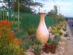 """See 31 photos and 15 tips from 4 visitors to Designer Gardens Landscaping. """"Anything you want in your garden they can do Landscaping, swimming pools,. Desert Climate, Vases Decor, Curb Appeal, Garden Landscaping, Swimming Pools, Garden Design, Landscape, Flowers"""