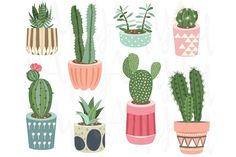 Cactus Collections cactus cacti diy elements cactus clip art hand drawn succulents clipart digital cactus flowers succulent clipart diy invite aquarium potted flower pot planting cactuses clip art cactuses clipart potted plants cactus clipart succulents and cacti succulents clip art cacti clip art botanical clip art craft scrapbooks collage sheet vintage retro paper design decoration printed card lovely illustration vector abstract events succulents holiday tribal native america celebration