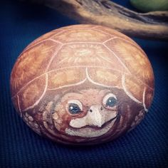 #turtle #tartaruga #animale #rettile #animal #natura #nature #life #naturart #rockpainting #sassidipinti #pedraspintadas #tasnoyama #rockart #painting #artigianato #fattoamano #handmade
