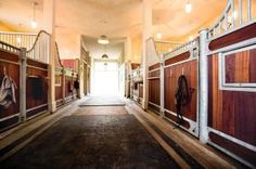 Martha Stewart stables interior - Equestrian Quarterly Fall 2013.jpg