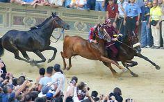 Il Palio di Siena: the world's wildest horse race