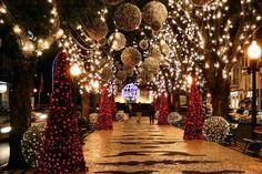 Conoce Oporto en Navidad