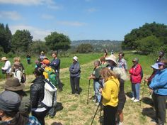 Wild Oakland - walks and events