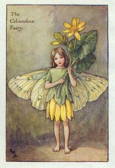Celandine Flower Fairy Print c.1927 Fairies by Cicely Mary Barker