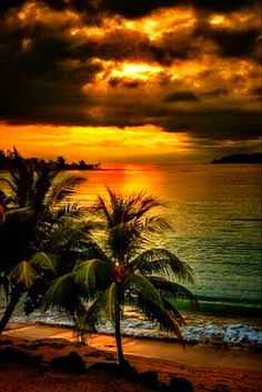 Palm trees edge of ocean sunset cloudy Beautiful Sunrise, Beautiful Beaches, Nature Pictures, Beautiful Pictures, Travel Pictures, Pictures Images, Foto Picture, Image Nature, Nature Gif