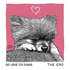 Pomeranians, illustration, line, sketch, love, dogs, gerry shamray Ode 2 Poms 8 Source by pizzart The post Ode 2 Poms 8 appeared first on Elwood Kennels. Sketches Of Love, Pomeranians, Animal Tattoos, Give It To Me, Doodles, Pets, Illustration, Love Sketch, Pomeranian