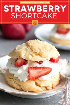 This is the best Homemade Strawberry Shortcake Biscuits recipe you will ever try! One bite of these flaky and sweet biscuits with strawberry shortcake whipped cream filling and you will fall in love. #SundaySupper #strawberry #strawberries #strawberryshortcake #shortcake #homemade #dessert Homemade Strawberry Shortcake, Strawberry Desserts, Shortcake Biscuits, Salty Cake, Cereal Recipes, Dessert Recipes, Baking Tins, Savoury Cake, Mini Cakes