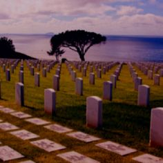 Naval Cemetery - Point Loma, San Diego Coleen B. --- we buried our beloved Uncle Red here (Admiral Warden, MD to Presidents)