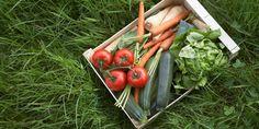 Sering-Seringlah Konsumsi Makanan Super Anti Kanker Ini http://www.perutgendut.com/read/sering-seringlah-konsumsi-makanan-super-anti-kanker-ini/2979 #Food #Kuliner #Health