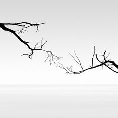 Fragmented Black and White Scenes Create Beautifully Abstract Formations - Kevin Saint Grey