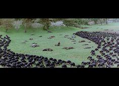 The Last Samurai.  A breathtaking scene. No words necessary ... just respect. sks