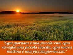 Buona Domenica by Metamorphosya - La filosofia del cambiamento  #Metamorphosya #ArthurSchopenhauer #buongiorno #giornata #vita #risveglio #nascita #mattina #giovinezza