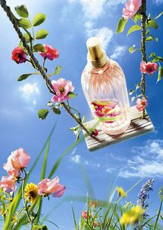 L'OCCITANE poster Beauty Ad, Beauty Shots, Advertising And Promotion, Cosmetic Design, Cosmetics & Perfume, Cute Wallpaper Backgrounds, Advertising Photography, Business Photos, Photoshop Design